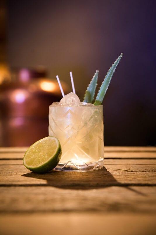 RUMULT Pineapple Mule von Lantenhammer